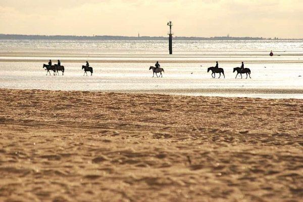Hougate chambre hote cheval plage