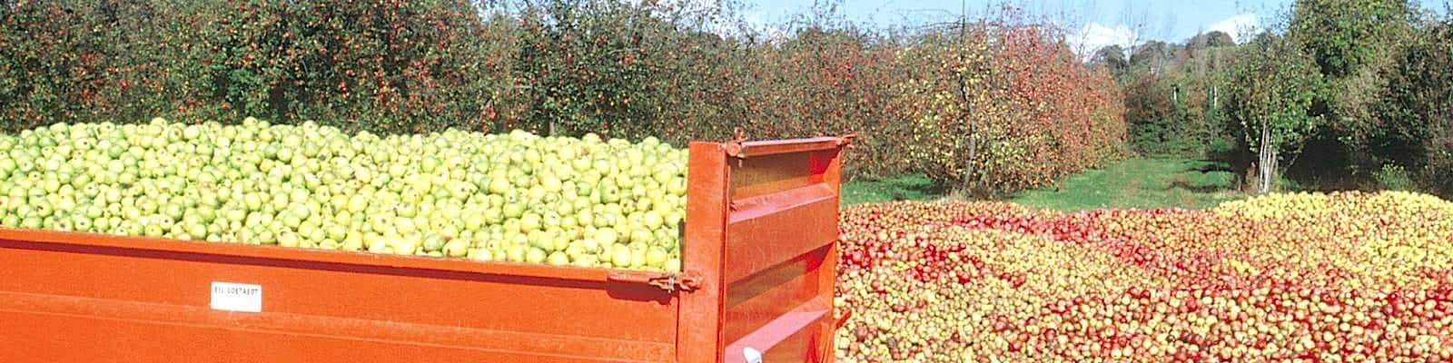 Chambre hotes Pont l'évèque pomme cidre