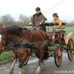 caleche deauville à cheval