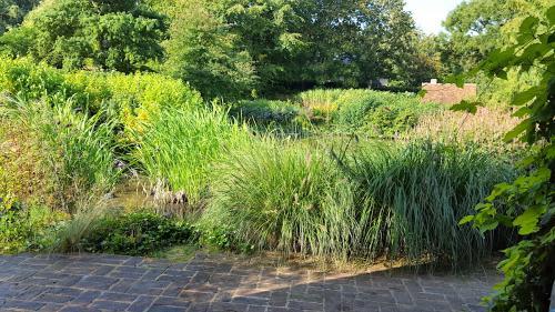 jardin cambremer 2